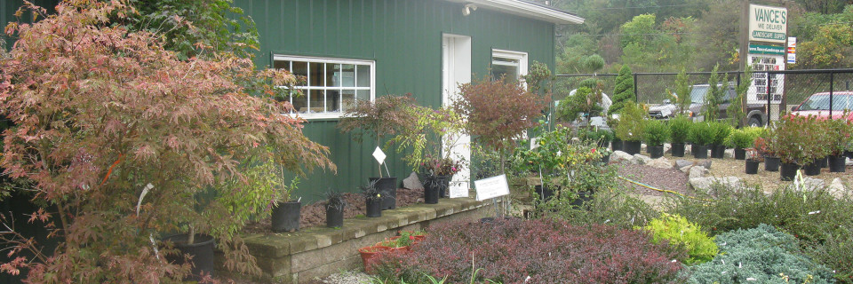 Beaver Falls PA Landscape Service Supplies A Beautiful Lawn
